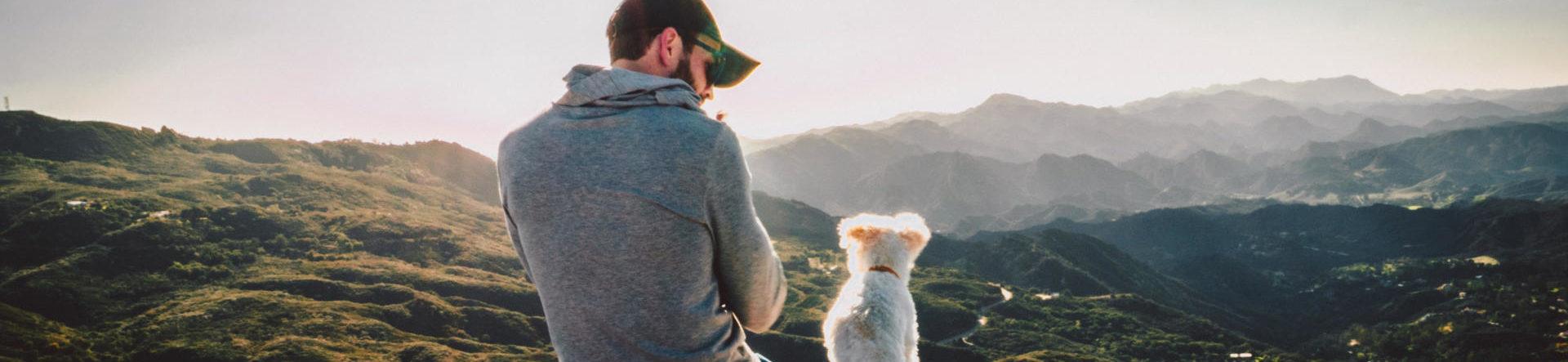 Aflivning af hund i Kolding – tryg og omsorgsfuld | Dyrlægehuset Kolding